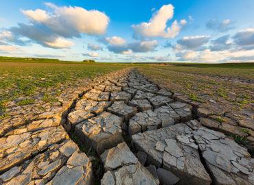 Wie Sie dem Klimawandel entgegenwirken können