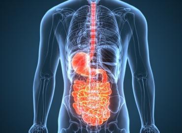 Gesundheit von Magen-Darm: Worauf müssen Senioren besonders achten?