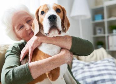 Mit Haustieren zu mehr Lebensqualität