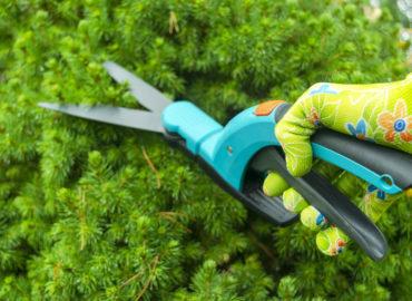 Gartenscheren stehen Ihnen in vielfältiger Ausführung zur Verfügung