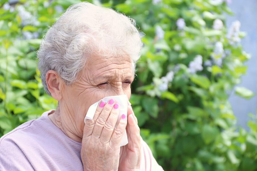 Wie Sie mit Ihrer Pollenallergie richtig umgehen
