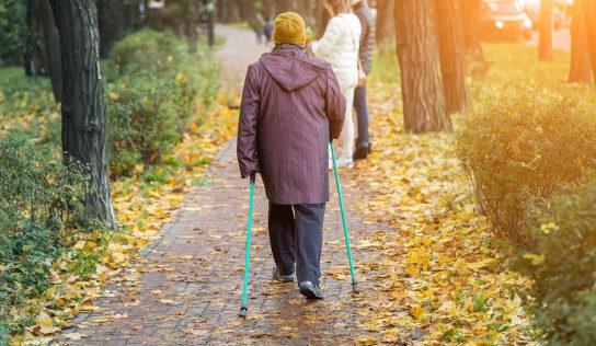 Mit Nordic Walking zu mehr Vitalität