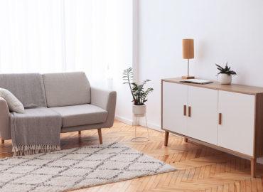 Pflegeleichte Zimmerpflanzen – Pflanzen im Haus auch ohne grünen Daumen
