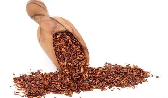 So heilsam ist Lapacho Tee